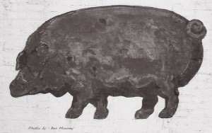 Pig by Ben Mooney in New York
